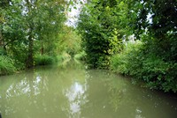 Marais Poitevin en barque