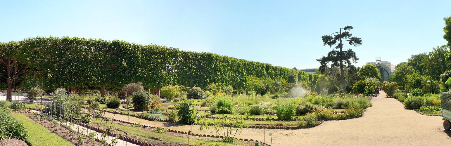 Photos panoramiques - Jardin des plantes saint etienne ...